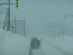 Blizzard - Kutchan, Hokkaido