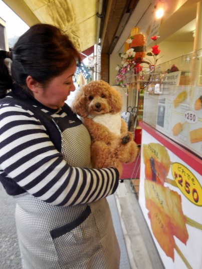 Sweet puppy - Kyoto