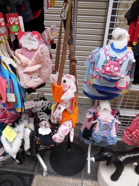 Dog accessories - Osaka