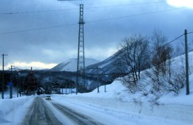 View from the bus (New Chitose airport to Niseko)