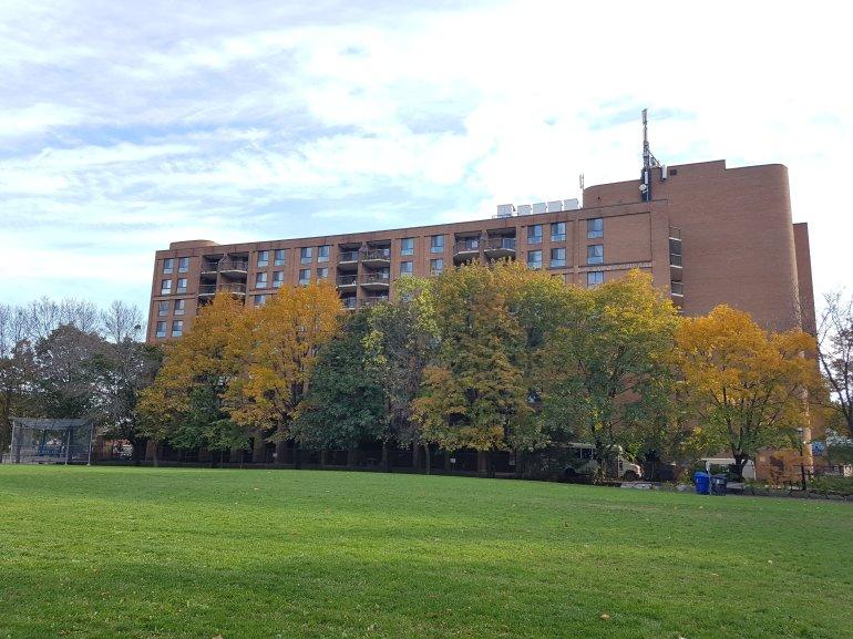Parliament Square Park, Toronto