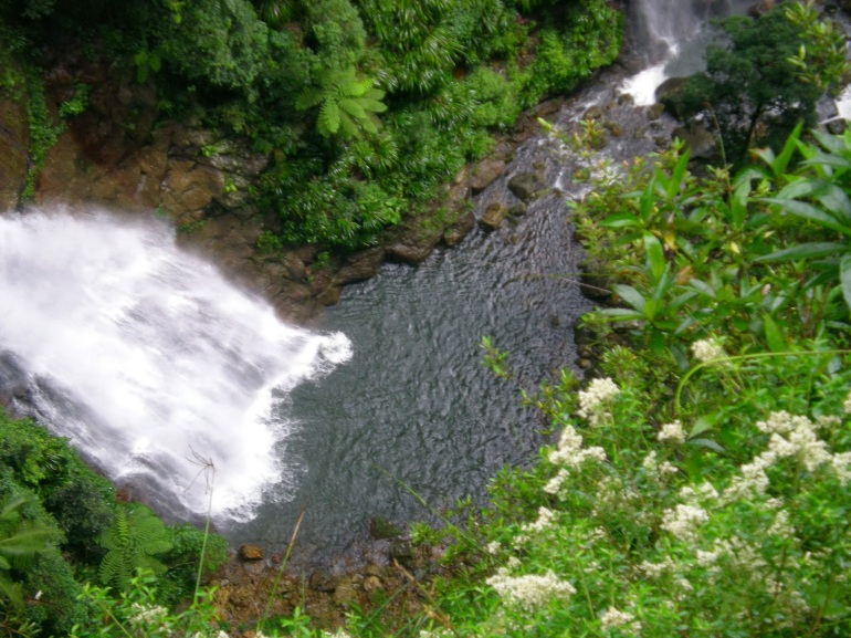 Binna Burra waterfall